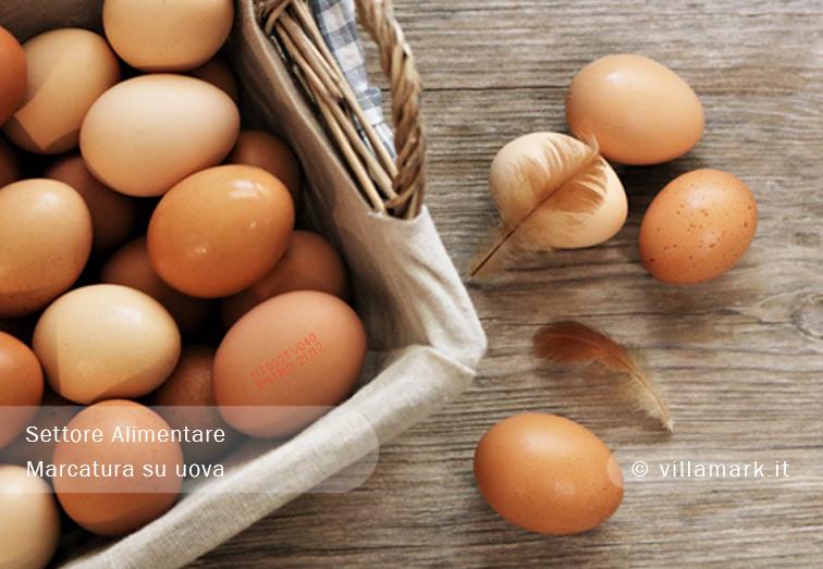 Marcatura Alimentare: esempi di codifica CE per alimenti_1